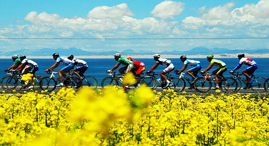 Qinghai  Lake Bicycle Race, Cycle around Qinghai Hu