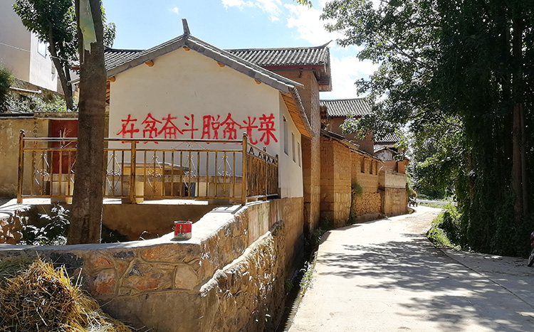 Shaxi Bike Tour, Cycle at Shaxi Ancient Town, Bicycle Tour of Yunnan